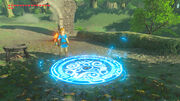 Travel Medallion used (Breath of the Wild)