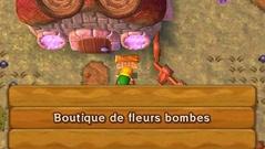 Boutique de Fleur Bombes ALBW