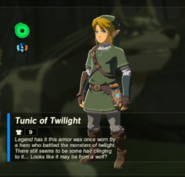 Breath of the Wild Hero's Clothes Twilight Princess (Body Armor) Tunic of Twilight (Inventory)