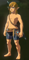 Breath of the Wild Armor Armorless Link (No Armor Equipped)