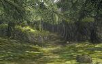 Bosque de Ordon TP