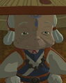 Breath of the wild impa.jpg