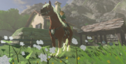 Breath of the Wild Horse (Registered) Epona (Link's House)