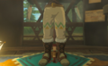 Breath of the Wild Brazen Beak Snowquill Trousers (Rito Village).png