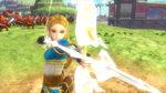 HWDE Zelda Botw Costume