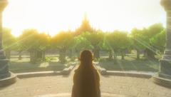 Zelda Vue sur Château d'Hyrule BOTW
