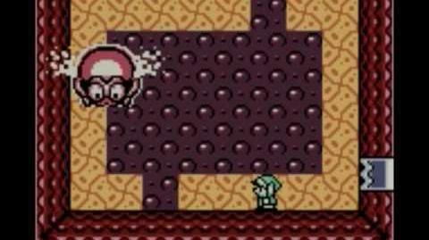 Fire Cephalopod (Link's Awakening)