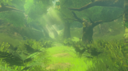 Bosque Kolog BOTW