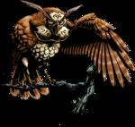 Kaepora Gaebora MM3D