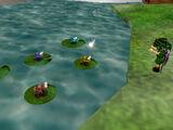 Coro de ranas