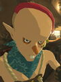 Breath of the wild sayge.jpg