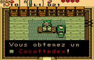 Cocottedex2