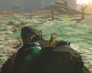 Breath of the Wild Hinox (Sleeping) Black Hinox (Gut Check Rock)
