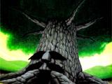 Deku-Baum
