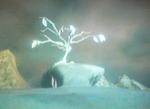 Árbol del Pico Nevado