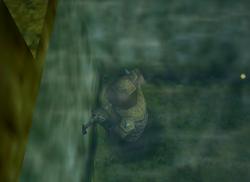 Moblin Underwater