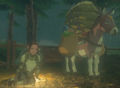 Breath of the Wild Merchants (Travelers) Yammo & her Donkey (Serenne Stable).png