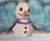 Sir Frosty