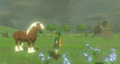 Breath of the Wild Horse Epona & Link (Ranch Ruins).png