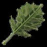 Breath of the Wild Improvised Weapons (Leaf) Korok Leaf (Icon)