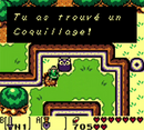 Coquillage 11