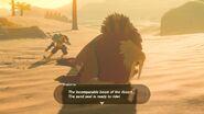 Link morsa del desierto BOTW