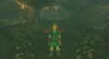 Breath of the Wild Korok Forest (Deku Tree's Stomach) Inside the Great Deku Tree (Great Hyrule Forest).png