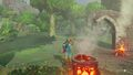 Camfire and pot (Breath of the Wild).jpg
