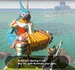 Kass Hero (Breath of the Wild)