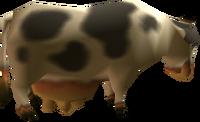 Vaca OoT y MM