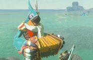 Kass Cashe (Breath of the Wild)