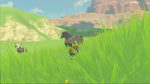 Link Cheval BOTW