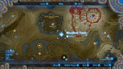 Mapa Gran Bosque de Hyrule