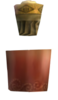 Potion Rouge TP2