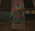 Breath of the Wild Enchanted Hylian Tunic (Kakariko Village).png