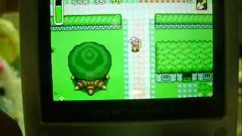 The Legend of Zelda: A Link to the Past Glitches