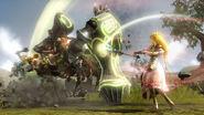 Zelda Combat HW