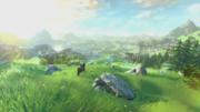 Overworld (The Legend of Zelda Wii U)