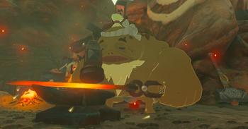 Breath Of The Wild Dark Link >> Rohan | Zeldapedia | Fandom