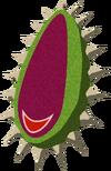 Graine de Bokobaba