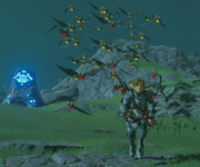 Breath of the Wild Keese Keese Swarm (Hyrule Field)