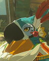 Breath of the wild kass.jpg