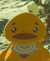 Breath of the wild dugby.jpg