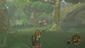 Caccia Screenshot - The Legend of Zelda Breath of the Wild.png