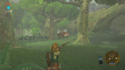 Caccia Screenshot - The Legend of Zelda Breath of the Wild