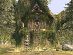 Maison de Link (Twilight Princess)