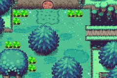 Minish Woods