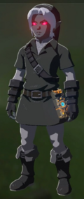 Breath of the Wild Dark Link (Armor Set) Dark Link's Clothes (Inventory)