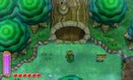 Bosque Perdido ALBW