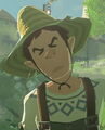 Breath of the wild nack.jpg